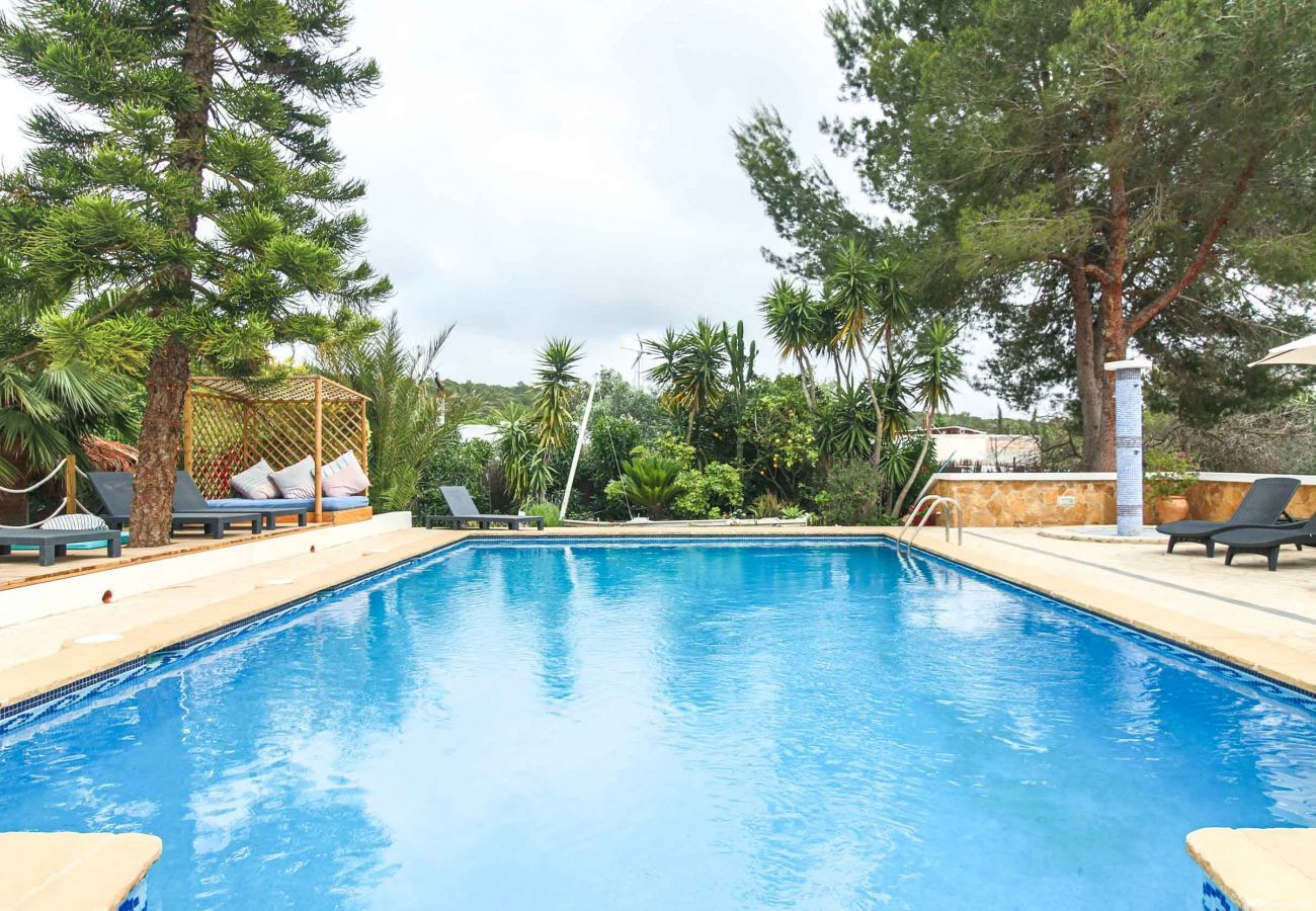 Piscina de la Villa Estrella Moli en Ibiza