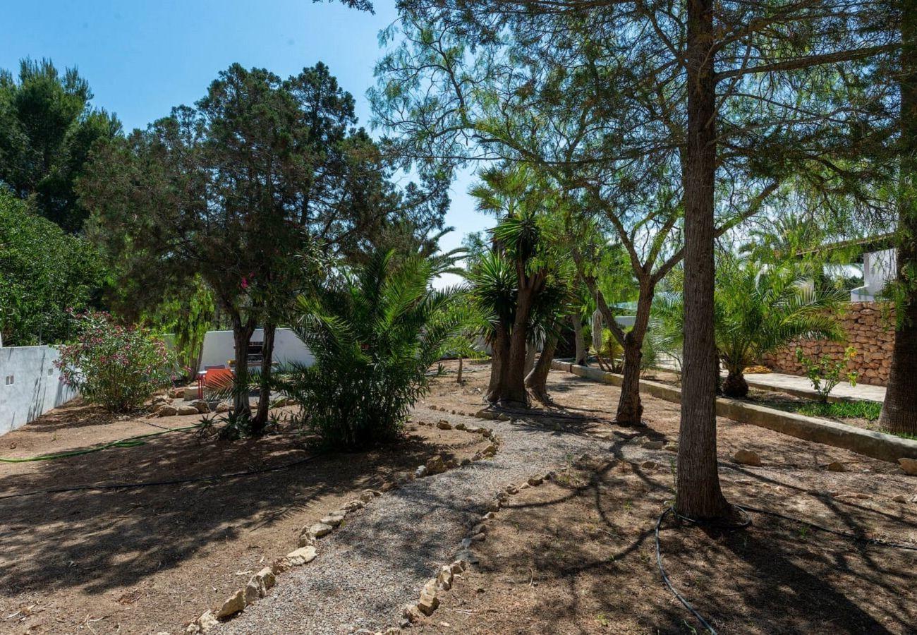 Casa en Sant Antoni de Portmany / San Antonio - CASA DANY